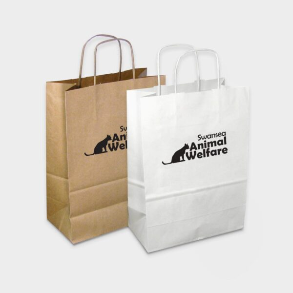 Sustainable Paper Carrier Bag Large